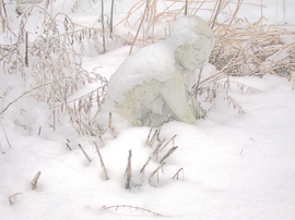 Sculpturesnow00147