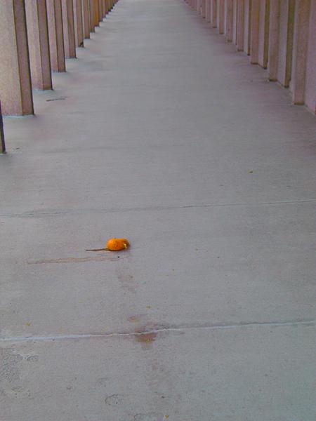 Orange_1_1